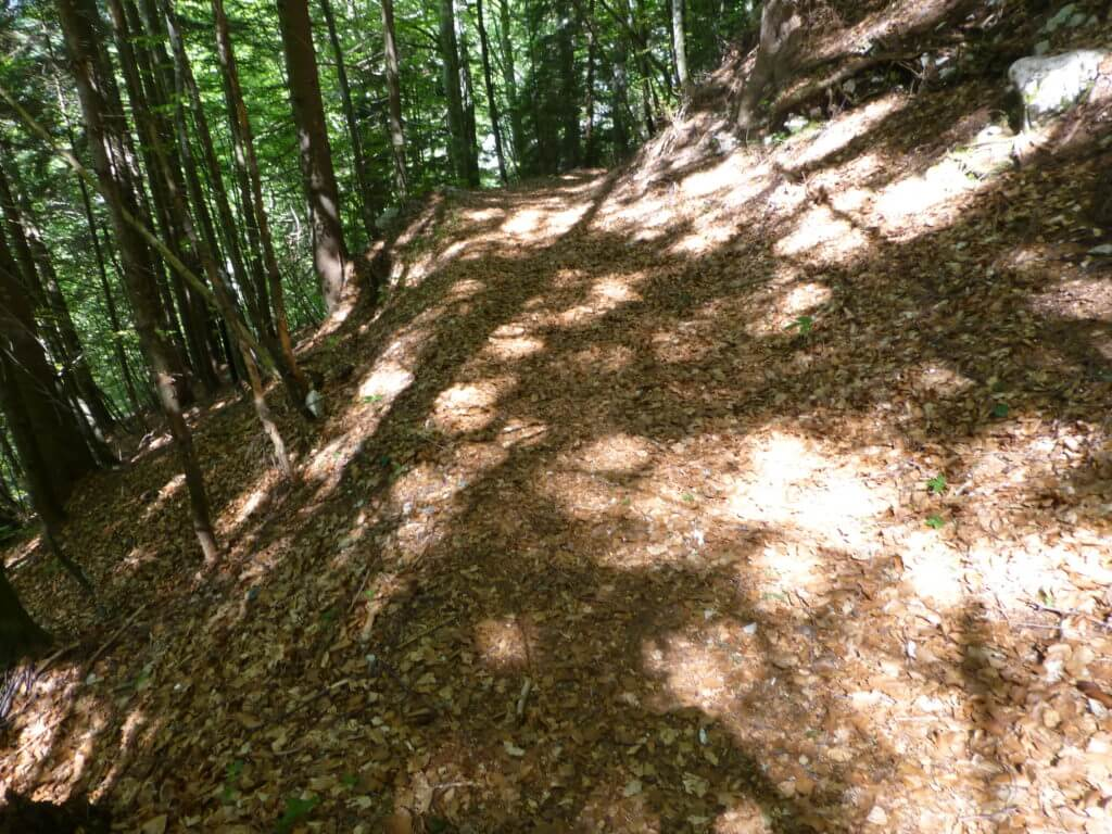 AAT_Alpe-Adria-Trail_Wegbeschaffenheit_Waldweg