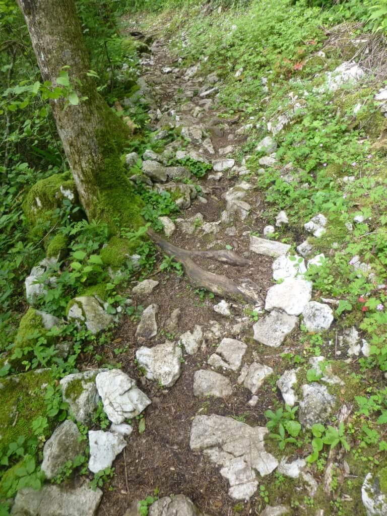 AAT_Alpe-Adria-Trail_Wegbeschaffenheit_Steine und Wurzeln
