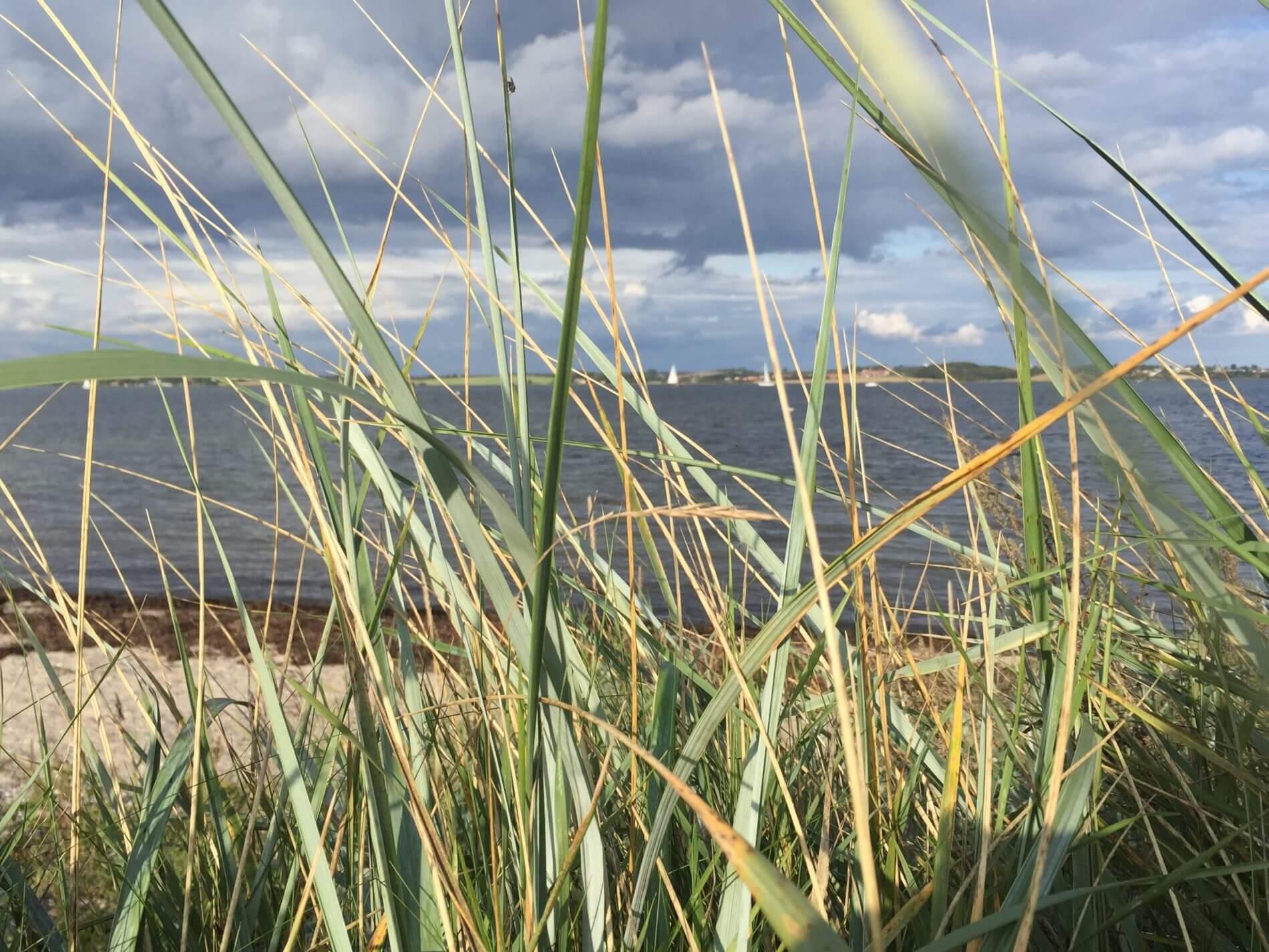 Herbstwanderung Holnis_Wolkenschauspiel Flensburger FördeHerbstwanderung Holnis_Wolkenschauspiel Flensburger Förde