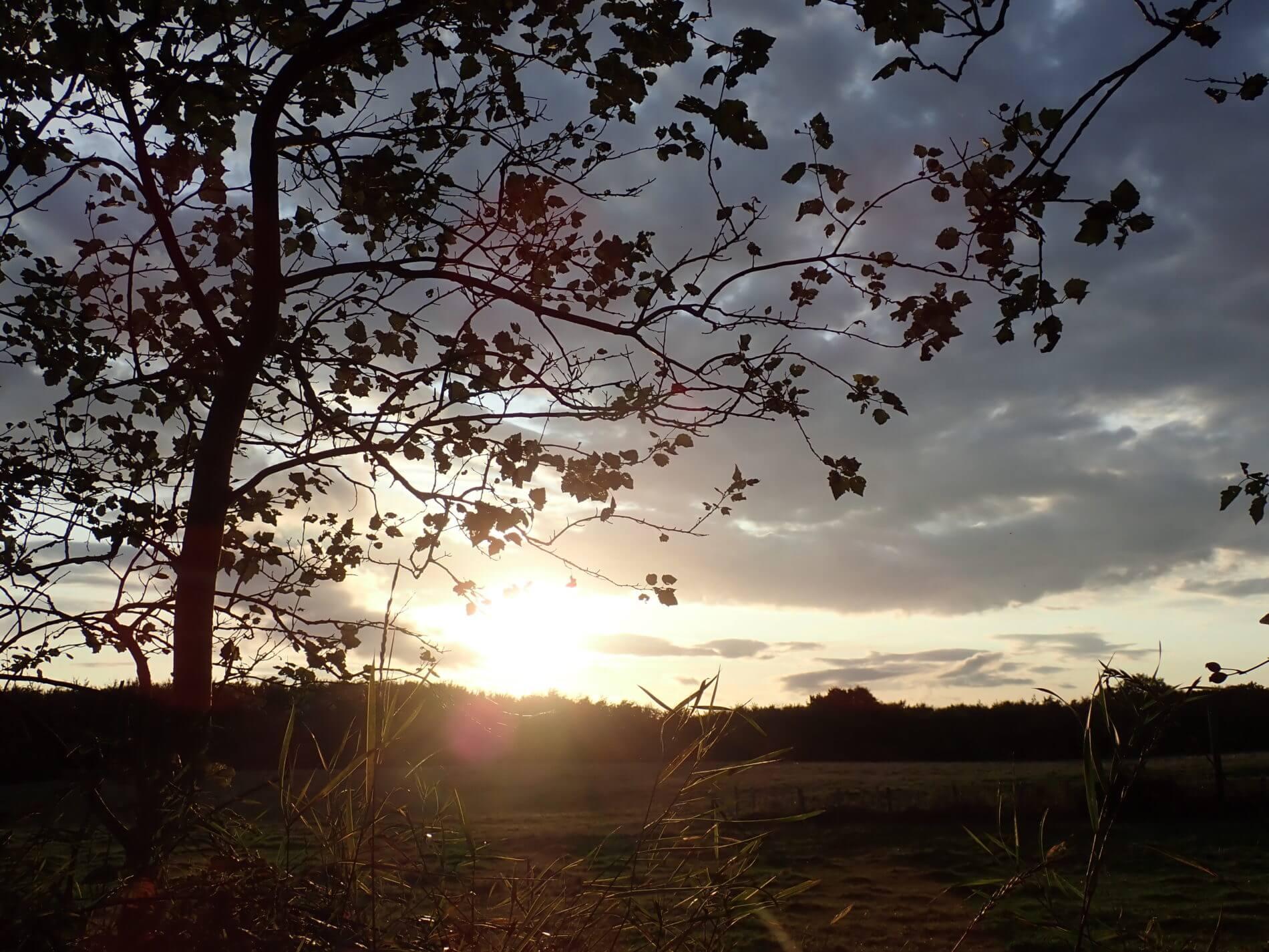 Herbstwanderung Holnis_Abendlicht