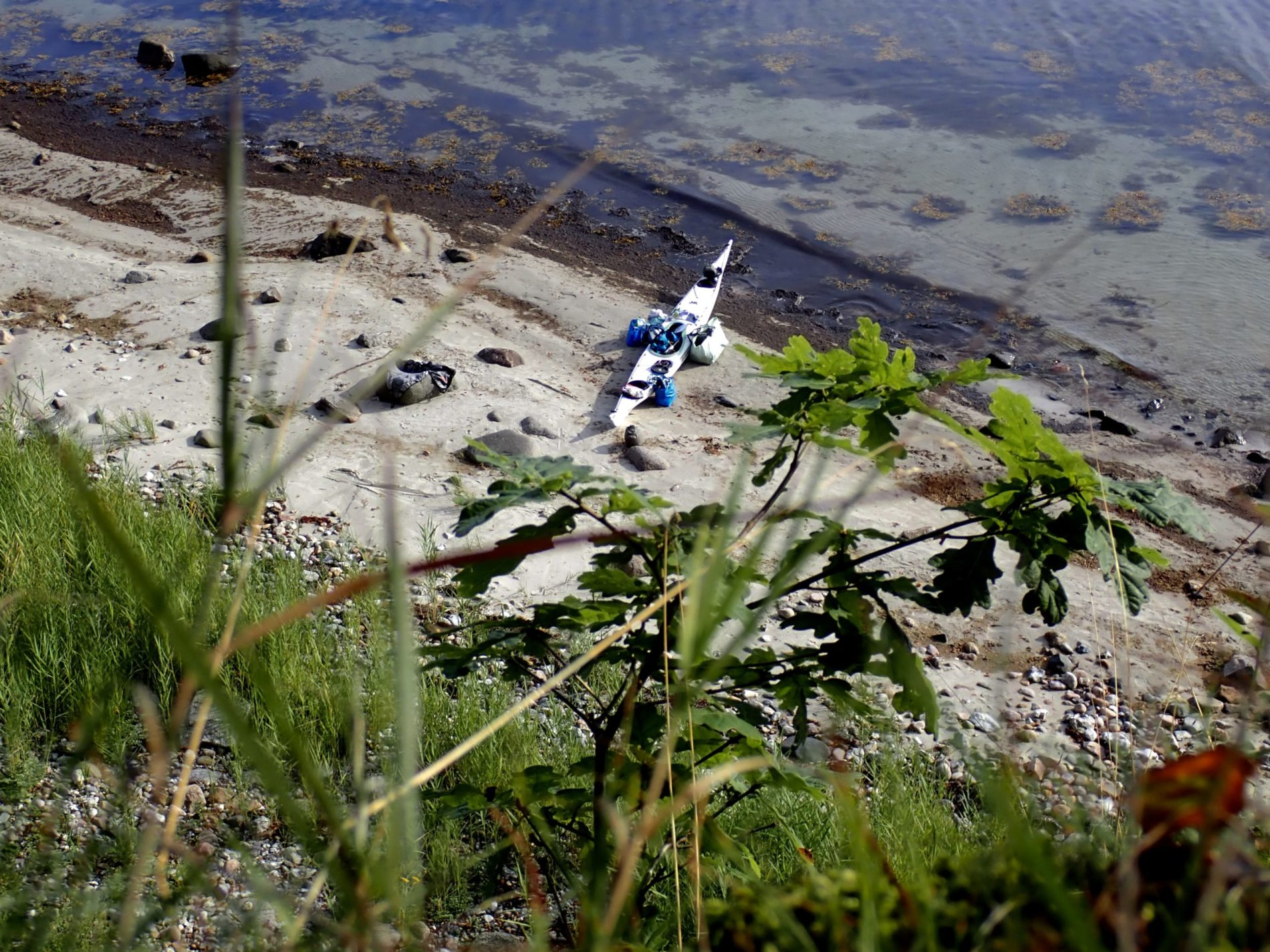 Mit dem Kajak um Alsen_Blick von der Steilküste