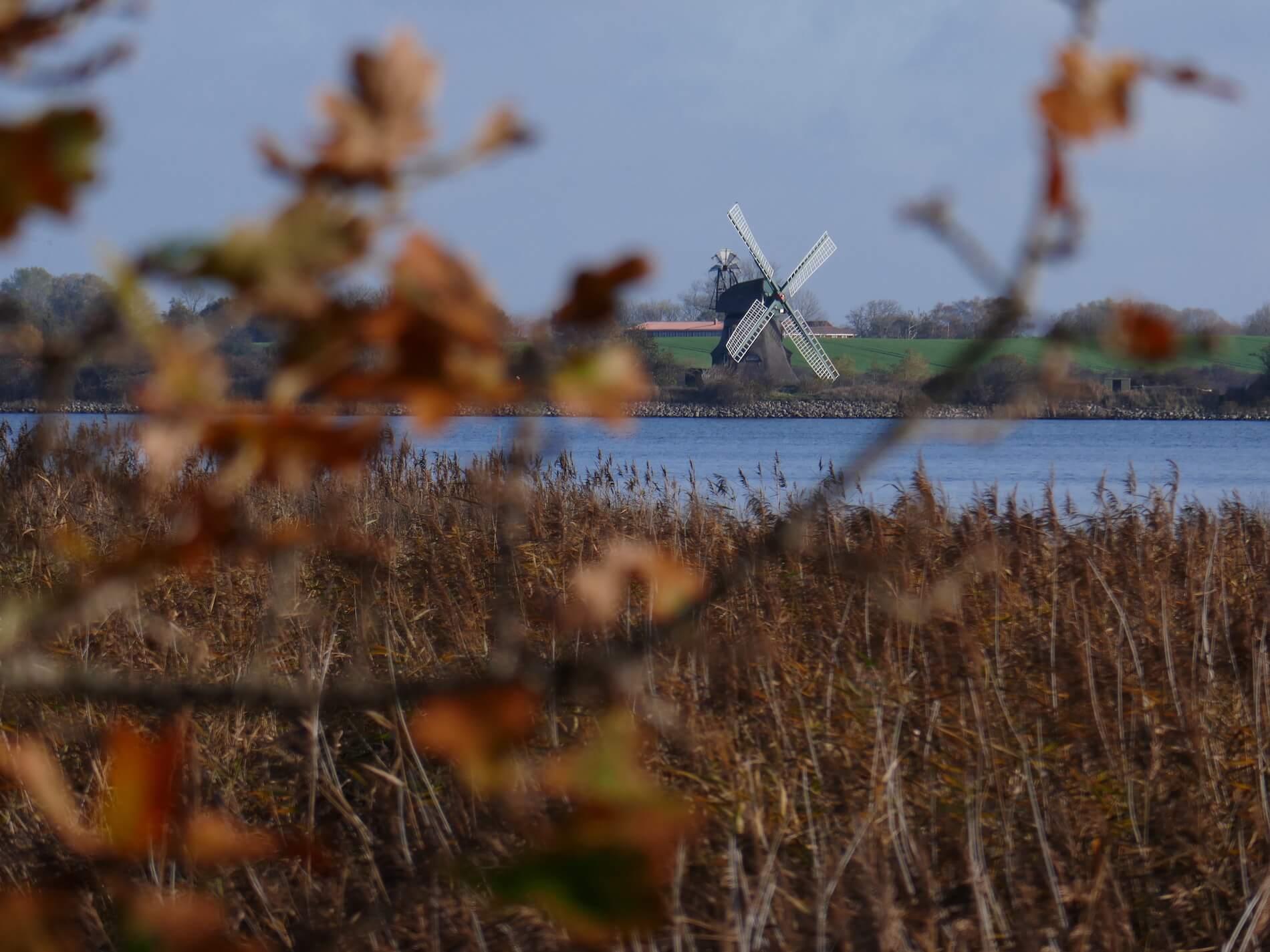 Mühle Charlotte_Geltinger Birk