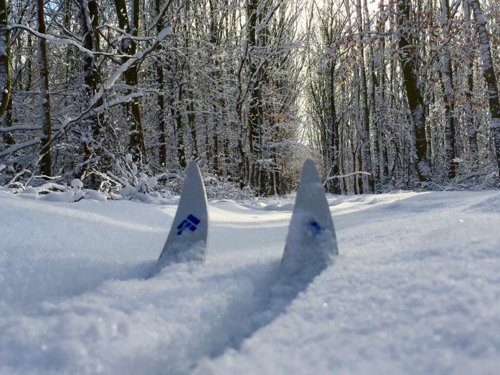 Langlauf in Nordfriesland_Skispitzen