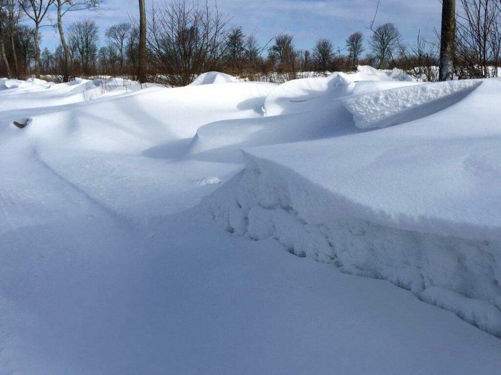 Schneeverwehung in Nordfriesland