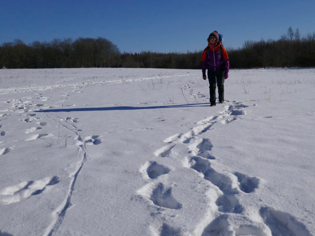 Winterwandern in Nordfriesland