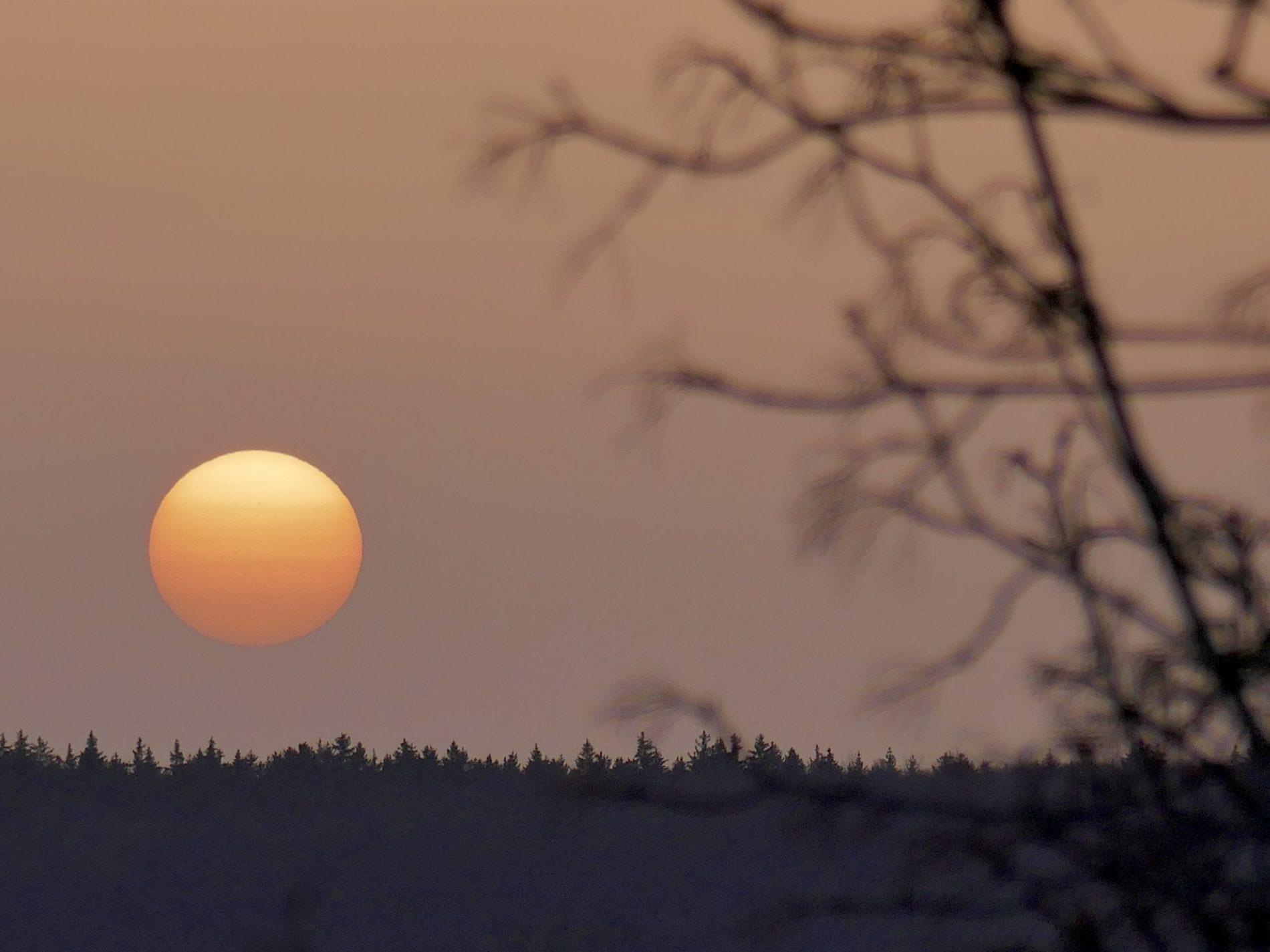 Sonnenaufgang mit Saharastaub_Lauchheim